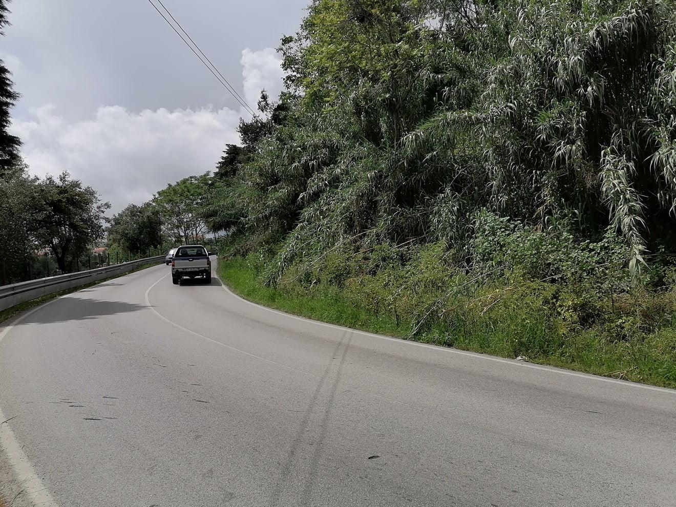 estrada algarvias IMG 20210428 133142